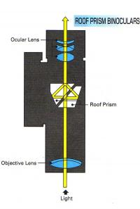 Figure_9_-_Roof_Prism_design.jpg