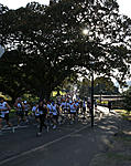 Click image for larger version  Name:runners.jpg Views:10 Size:177.1 KB ID:76463