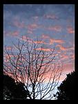 Click image for larger version  Name:sunset_July_2006_1.jpg Views:80 Size:70.7 KB ID:17995